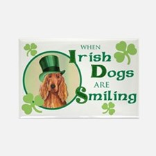 St. Patrick Irish Setter Rectangle Magnet