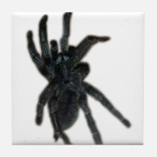 trinidad chevron tarantula Tile Coaster