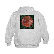 Neolithic Mandala Hoodie