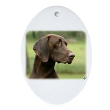 German Shorthaired Pointer 9Y163D-159 Ornament (Ov