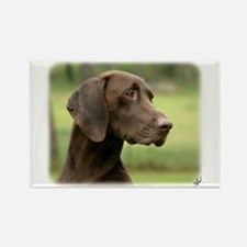 German Shorthaired Pointer 9Y163D-159 Rectangle Ma