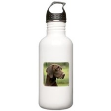 German Shorthaired Pointer 9Y163D-159 Water Bottle