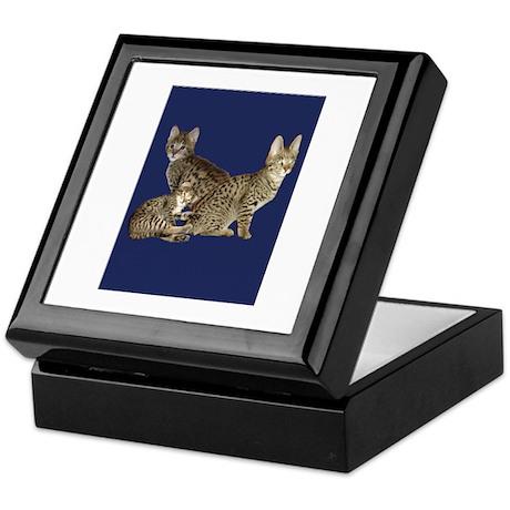 savannah kittens Keepsake Box