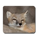 Fox mousepad Mouse Pads