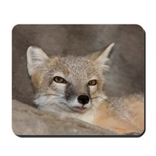 Sleepy, Sly Fox Mousepad
