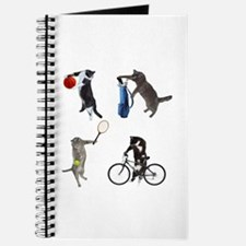 Sports Cats Journal