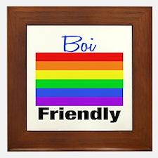 Boi Friendly Framed Tile