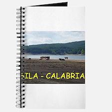 Cute Silas Journal