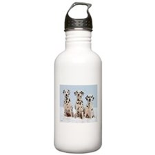 Dalmatian Family Water Bottle