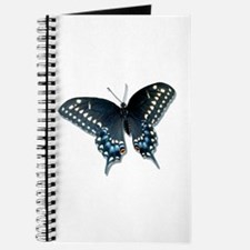 Black Swallowtail butterfly Journal