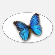 Blue Morpho Decal