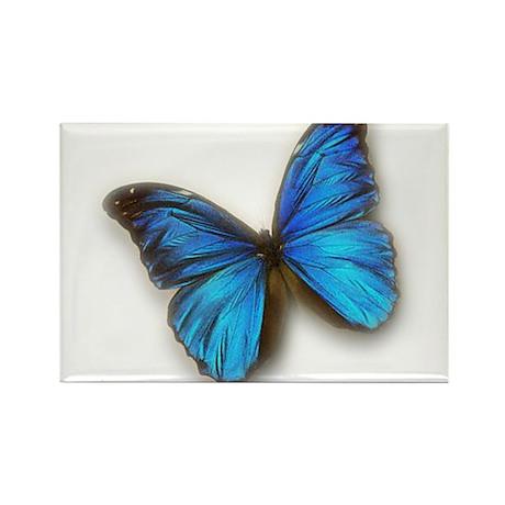 Blue Morpho Rectangle Magnet
