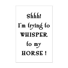 Trying to Horse Whisper Posters