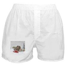 Sledding Boxer Shorts