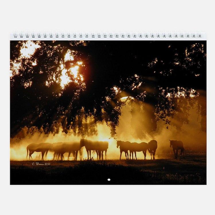 Horse Wall Calendar Judges Pick
