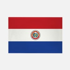 Paraguay Flag Rectangle Magnet (100 pack)
