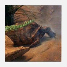 Gopher Tortoise Tile Coaster