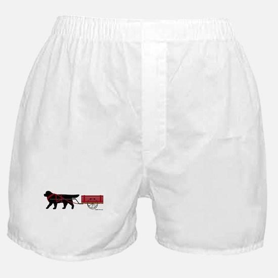 Newfoundland Pulling Cart Boxer Shorts