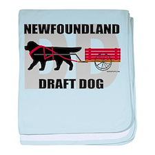 Draft Dog (DD) baby blanket
