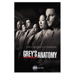 Grey's Anatomy 2010 Large Poster