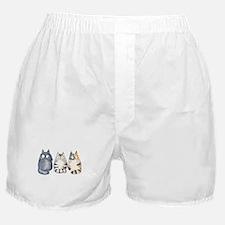 Three 3 Cats Boxer Shorts