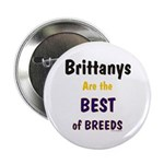 Brittany Best of Breeds Button