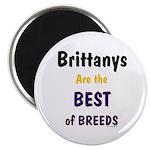 Brittany Best of Breeds Magnet