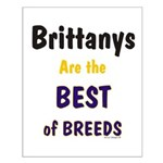 Brittany Best of Breeds Small Poster