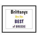Brittany Best of Breeds Large Framed Print