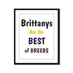 Brittany Best of Breeds Framed Panel Print