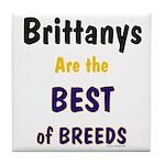 Brittany Best of Breeds Tile Coaster