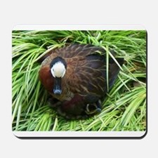 White-faced whistling duck Mousepad