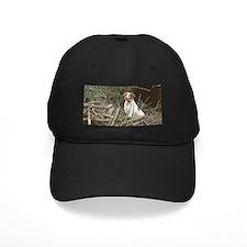 Bird Crazy Baseball Hat