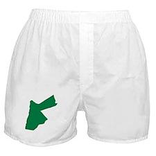 Jordan Boxer Shorts