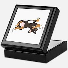 Sleeping Bernese Mountain Dog Keepsake Box