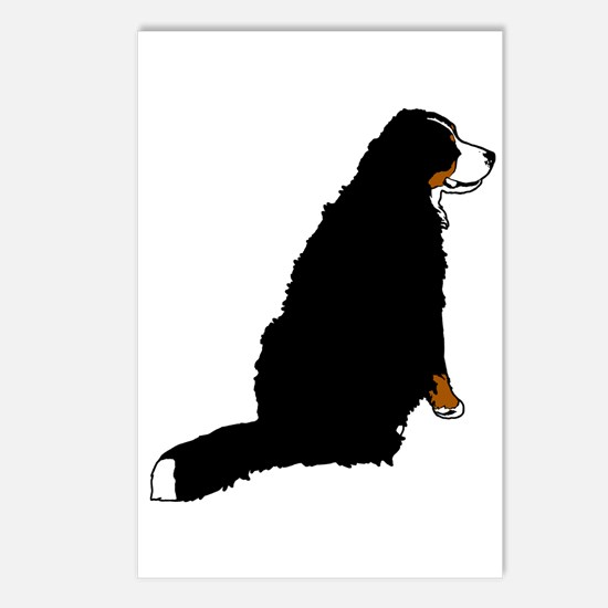 Sitting Bernese Mountain Dog Postcards (Package of