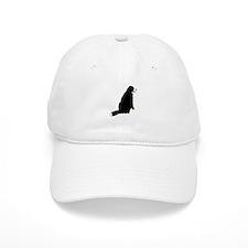 Sitting Bernese Mountain Dog Baseball Cap