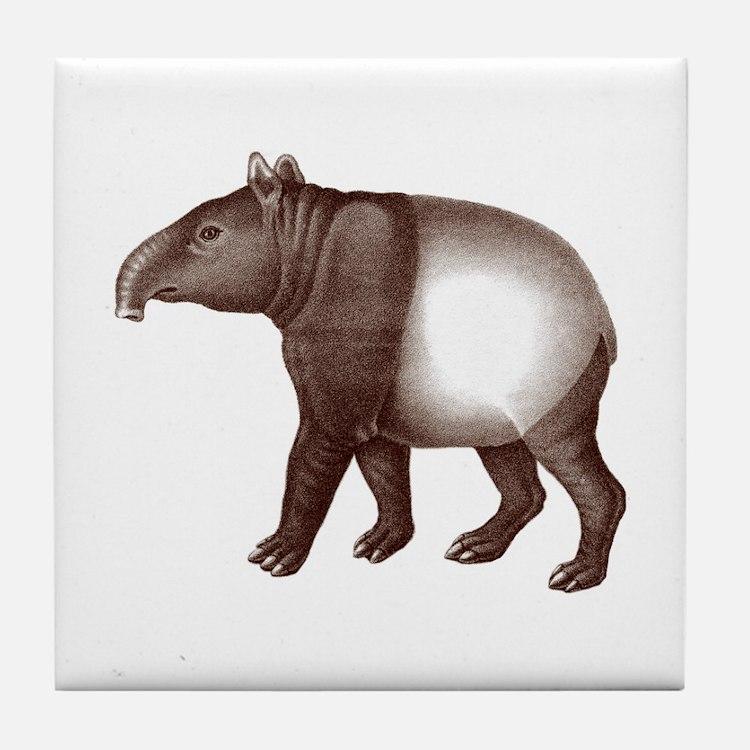 Malayan Asian Tapir Tile Coaster
