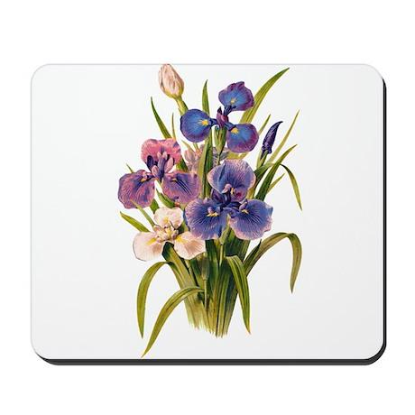 Japanese Irises Mousepad