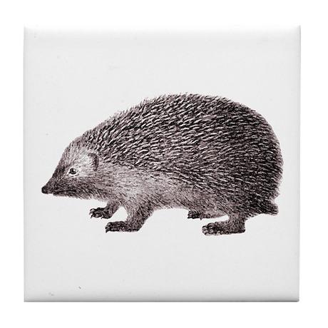 Hedgehog Antique Engraving Tile Coaster