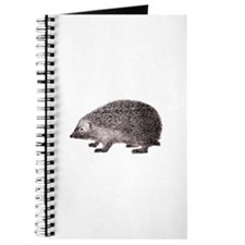 Hedgehog Antique Engraving Journal