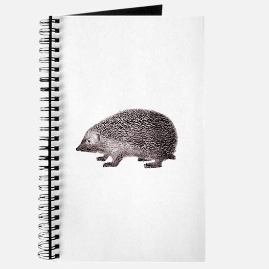 Hedgehog Antique Engraving Journal