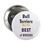 Bull Terrier Best Breeds 2.25