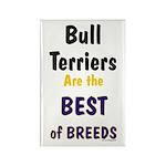 Bull Terrier Best Breeds Rectangle Magnet (100 pac