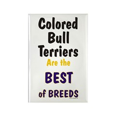 Colored Bull Terrier Best Rectangle Magnet (100 pa