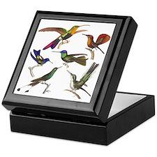 Six Pretty Hummingbirds Keepsake Box