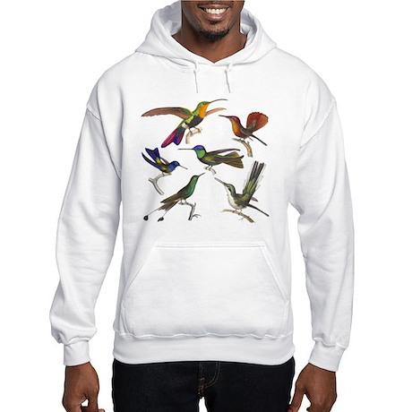 Six Pretty Hummingbirds Hooded Sweatshirt