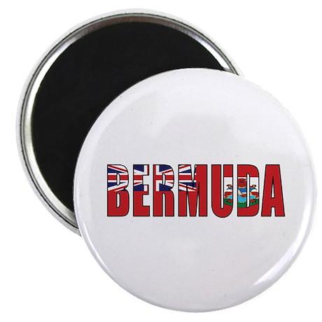 """Bermuda 2.25"""" Magnet (10 pack)"""