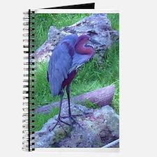 goliath heron Journal