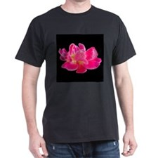Dave Orchids:Single Pink Rose T-Shirt